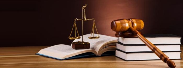 Poursuite d'études en droit : faut-il faire un LLM ou un mastère spécialisé ?